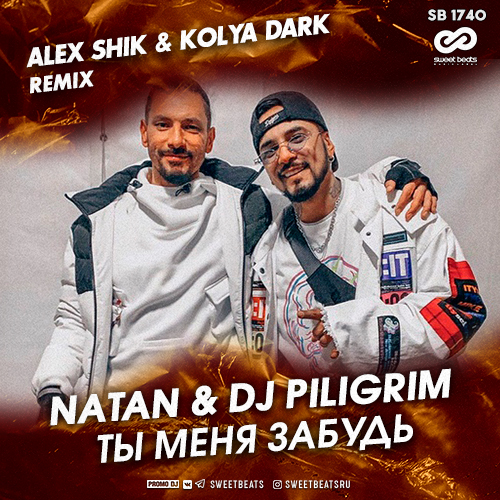 Natan & DJ Piligrim - Ты Меня Забудь (Alex Shik & Kolya Dark Remix)