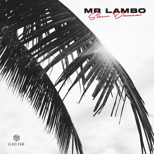 Mr Lambo - Slow Dance